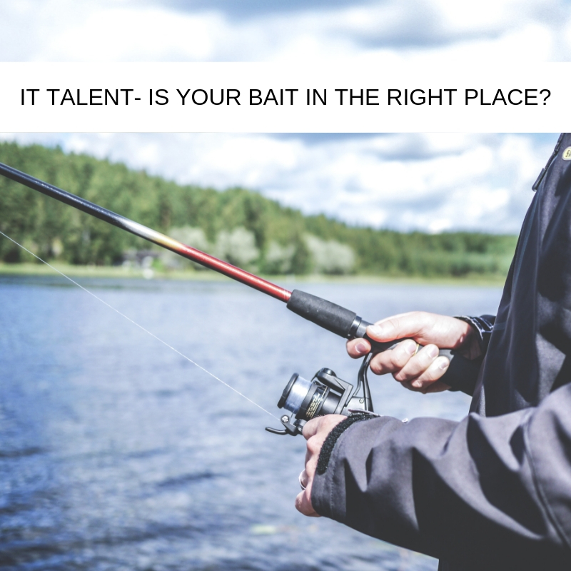 Attracting the Best IT Talent. Now IS the Right Time - Is Your Bait In The Right Place?