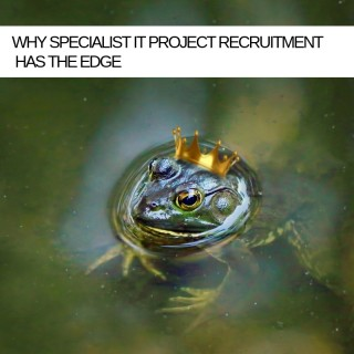 Kissing lots of frogs is no way to find your prince2 – Why specialist IT Project Recruitment has the edge